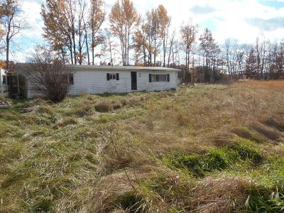 Adams County, Brown County, Clinton County, Highland County Single Family Home For Sale: 7746 Weis Road
