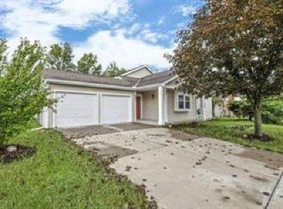 Deerfield Twp. Single Family Home For Sale: 8217 Winters Lane