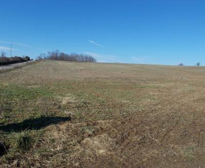 Residential Lots & Land For Sale: 2857 Brier Ridge Road