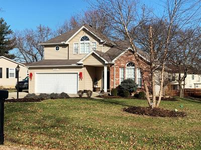 Hidden Valley Single Family Home For Sale: 20058 Lakeview Drive