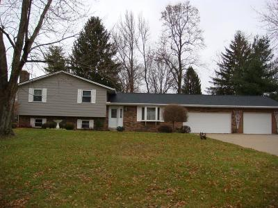 Ross Twp OH Single Family Home For Sale: $244,900