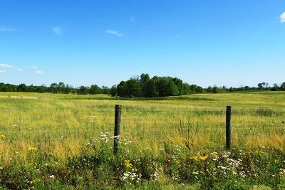 Adams County Residential Lots & Land For Sale: 2 Decatur Pike