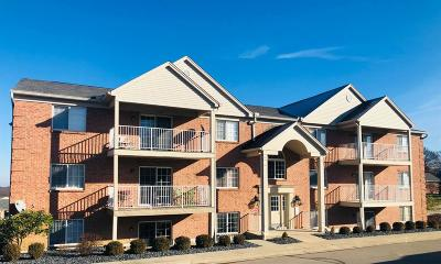 Green Twp Condo/Townhouse For Sale: 3383 Emerald Lakes Drive #1B
