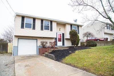 Colerain Twp Single Family Home For Sale: 2930 Overdale Drive