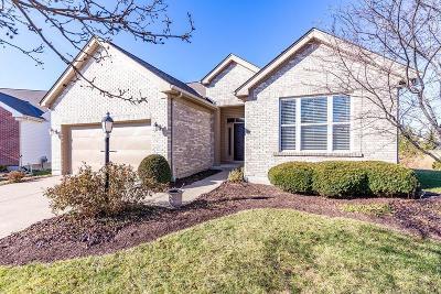 Single Family Home For Sale: 8099 Jeannes Creek Lane
