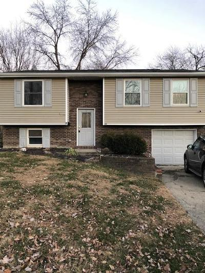 Colerain Twp Single Family Home For Sale: 10254 Chippenham Court
