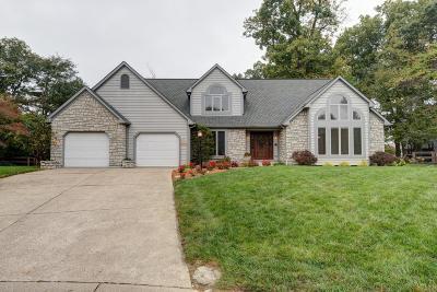 Liberty Twp Single Family Home For Sale: 6531 Stonehenge Boulevard