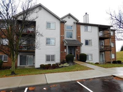 West Chester Condo/Townhouse For Sale: 8919 Eagleview Drive #1