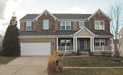 Hamilton Single Family Home For Sale: 953 Spruce Glen