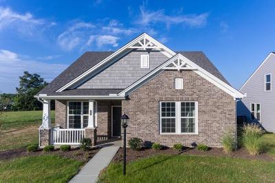 Cincinnati Single Family Home For Sale: 2063 Seymour Avenue