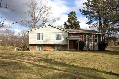Delhi Twp Single Family Home For Sale: 6350 Upper Road