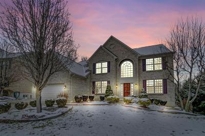 Hamilton County Single Family Home For Sale: 1806 Lindsey Lane