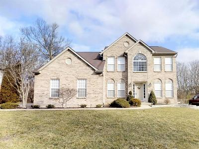 Liberty Twp Single Family Home For Sale: 6990 Ashview Lane