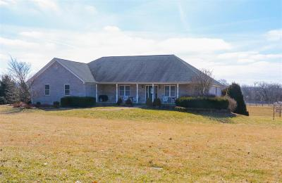 Adams County, Brown County, Clinton County, Highland County Single Family Home For Sale: 5385 New Burlington Road