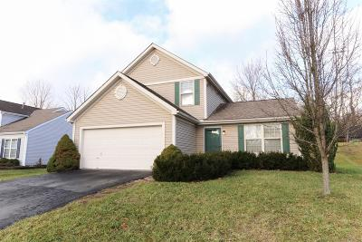 Deerfield Twp. Single Family Home For Sale: 2078 Riverwood Trail