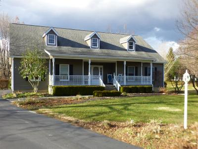 Adams County, Brown County, Clinton County, Highland County Single Family Home For Sale: 3045 Hale Road