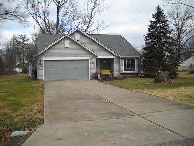 Hamilton County, Butler County, Warren County, Clermont County Single Family Home For Sale: 1124 Orchard Lane