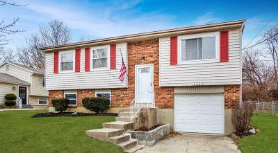 Delhi Twp Single Family Home For Sale: 4428 Valence Drive