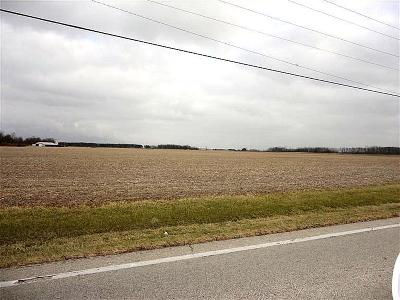 Clinton County Residential Lots & Land For Sale: St Rt 134
