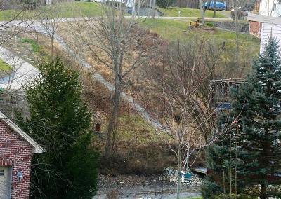 Lawrenceburg Residential Lots & Land For Sale: 2646 Rosemeade Lane