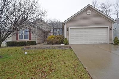 Miami Twp Single Family Home For Sale: 1180 E Glen Echo Lane