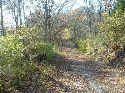 Adams County, Brown County, Clinton County, Highland County Residential Lots & Land For Sale: Old State Road