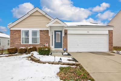 Hamilton County, Butler County, Warren County, Clermont County Single Family Home For Sale: 938 S First Street