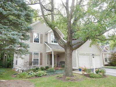 Deerfield Twp. Single Family Home For Sale: 9347 Carriage Run Circle