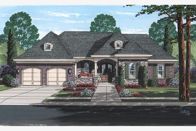 Miami Twp Single Family Home For Sale: 6327 Evergreen Lane #Lot 6