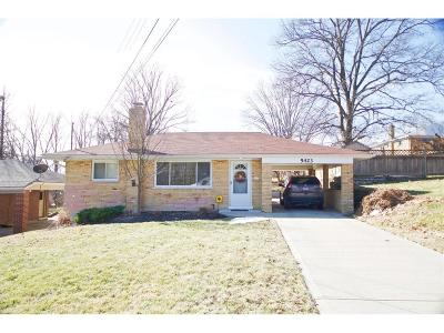 Delhi Twp Single Family Home For Sale: 5423 Cannas Drive