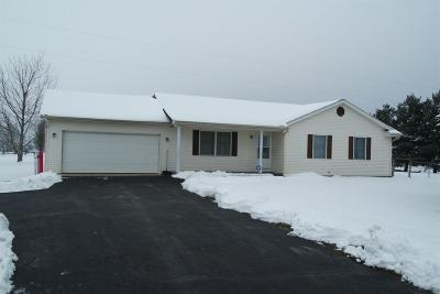 Vernon Twp OH Single Family Home For Sale: $154,900