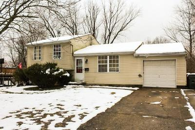 Colerain Twp Single Family Home For Sale: 10273 Chippenham Court