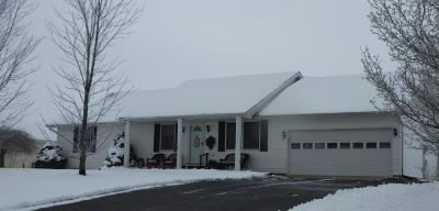 Adams County, Brown County, Clinton County, Highland County Single Family Home For Sale: 410 Limerick Drive