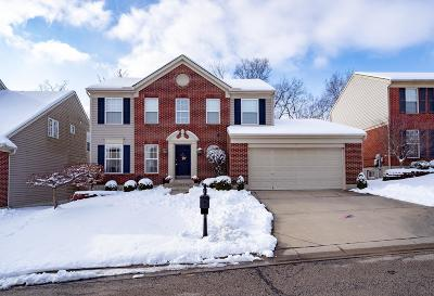 Green Twp Single Family Home For Sale: 7067 Jessicas Oak Court
