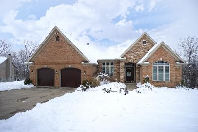 Liberty Twp Single Family Home For Sale: 4659 Snowbird Drive