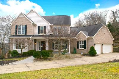 Hamilton County Single Family Home For Sale: 3220 Ivy Hills Boulevard