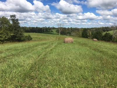 Adams County, Brown County, Clinton County, Highland County Residential Lots & Land For Sale: Fishing Gut Road