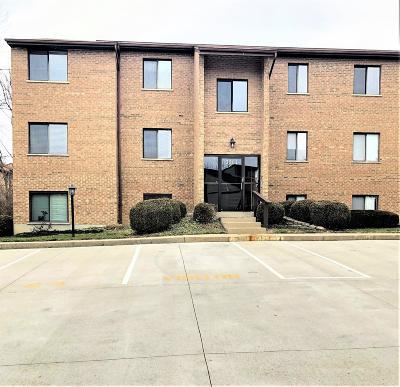 Green Twp Condo/Townhouse For Sale: 3507 West Fork Road #17