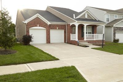 Cincinnati Single Family Home For Sale: 2023 Faith Street