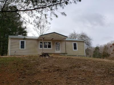 Adams County, Brown County, Clinton County, Highland County Single Family Home For Sale: 7583 Blue Creek Road