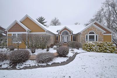 Hamilton County Single Family Home For Sale: 287 Sunny Acres Drive