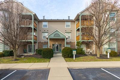 Green Twp Condo/Townhouse For Sale: 4921 N Arbor Woods Court #307