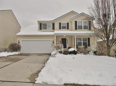 Green Twp Single Family Home For Sale: 3625 Ridgewood Avenue