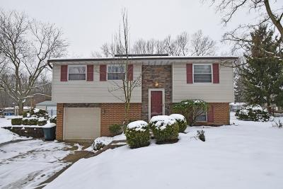 Miami Twp Single Family Home For Sale: 1351 Linden Creek Drive