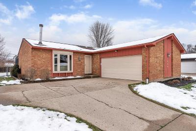 Hamilton County, Butler County, Warren County, Clermont County Single Family Home For Sale: 3054 Regal Lane