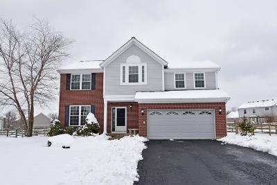 Warren County Single Family Home For Sale: 5188 Birchwood Farms Drive
