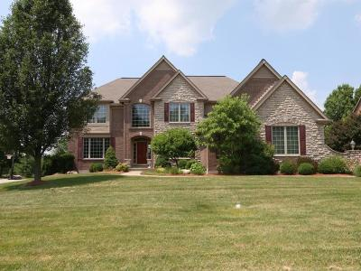 Miami Twp Single Family Home For Sale: 6574 Trailwoods Drive