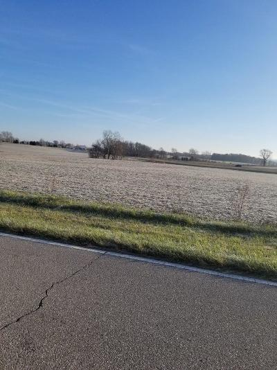 Adams County, Brown County, Clinton County, Highland County Residential Lots & Land For Sale: St Rt 41