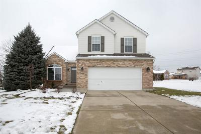 Single Family Home For Sale: 225 Heritage Trail Drive