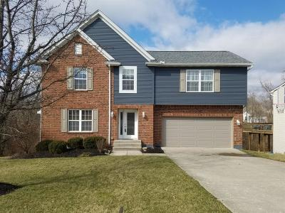 Clermont County Single Family Home For Sale: 5641 Harvest Ridge Drive